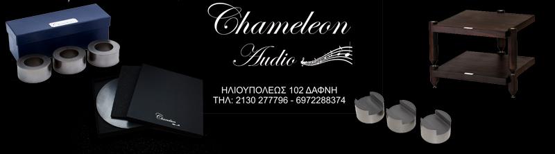 chameleon banner 1