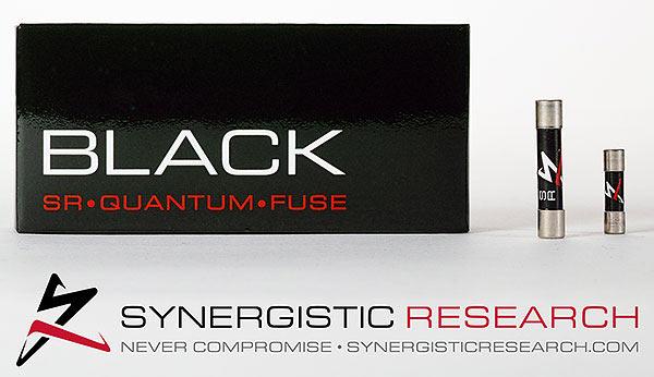 synerg-present-3